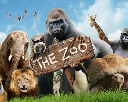 The Hyperreality of the Zoo